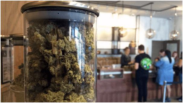 Marijuana bill Ontario