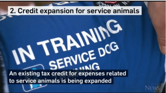 Service animals new tax rules