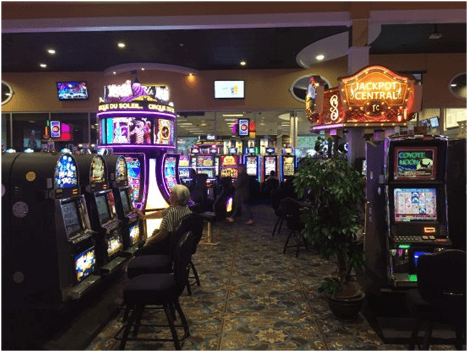 Treasure Cove Casino