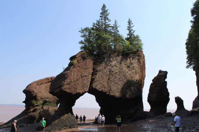 Guided tour through New Brunswick's Hopewell Rocks