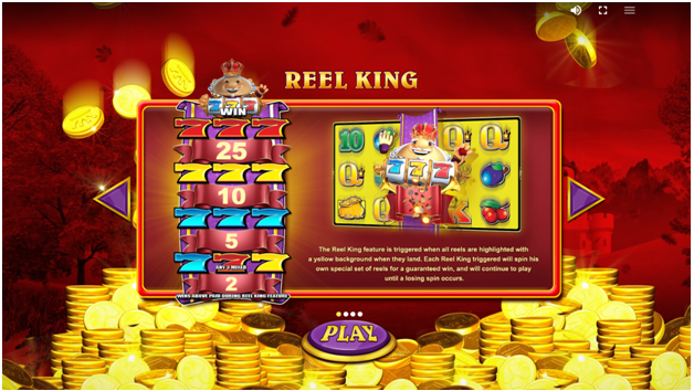 Reel King Mega How to play